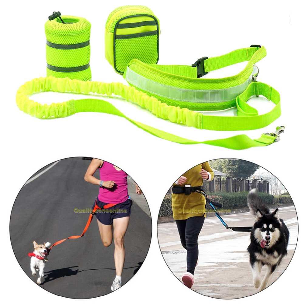 elastische hundeleine joggingleine hundeleine hundeleine bauchgurt f r hunde. Black Bedroom Furniture Sets. Home Design Ideas